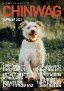 Chin Wag cover